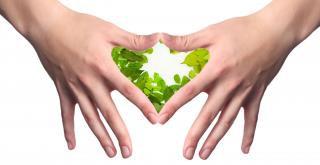 Sagesse du coeur et sa puissance symbolique